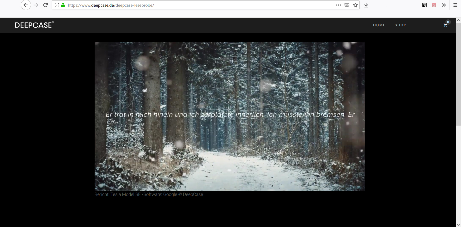 SCREENSHOT_Deepcase_website_Leseprobe
